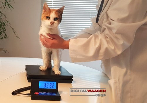 Kleine Tierwaage für Katzen und Welpen