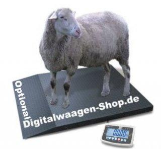 Nutztierwaage Viehwaage optional mit Rampe Schafe Schweine Ziegen